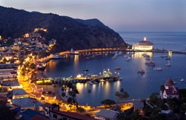 catalina at night
