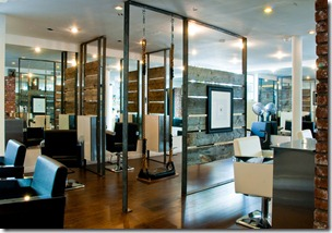 Kristoff Ball Salon Overview with Swing
